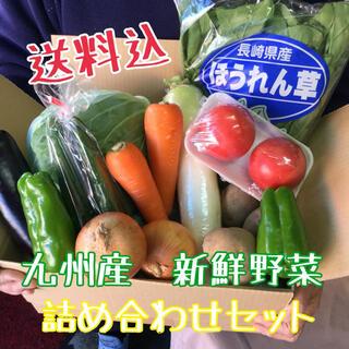 九州産 新鮮野菜を 詰め合わせセット(野菜)