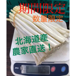 希少!北海道産 ホワイトアスパラ500g(野菜)