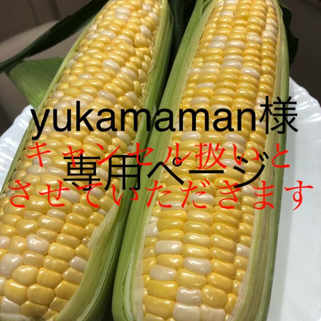 yukamaman様専用ページ とうもろこし 食品/飲料/酒の食品(野菜)の商品写真