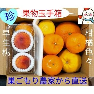 桃と柑橘♥果物玉手箱♥巣ごもり農家=雪だるまから直送します(フルーツ)