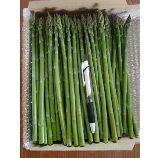 【専用】camico様 グリーンアスパラ 1.5kg(野菜)