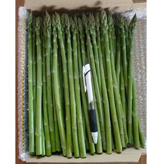 【専用】camico様 グリーンアスパラ1.5kg(野菜)