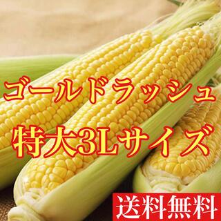 長崎県産ゴールドラッシュ 特大3Lサイズ3本 送料無料(野菜)