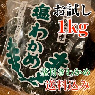 【送料無料】塩蔵わかめ 500g ×2袋 お値打ち商品 湯通し 美味しい ワカメ(その他)