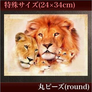 特殊サイズ(24×34cm)丸ビーズ【005】フルダイヤモンドアート(アート/写真)
