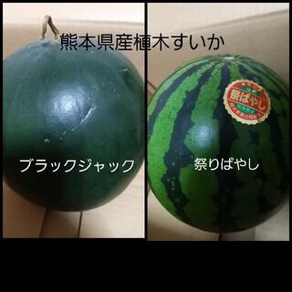 熊本県産植木すいか 家庭用食べ比べセット(フルーツ)