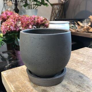 おしゃれ植木鉢 グレー植木鉢(プランター)