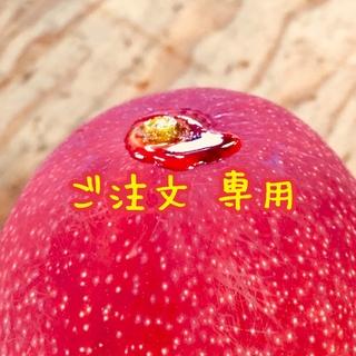 宮崎県産 完熟マンゴー お知らせ・お問い合わせ(フルーツ)
