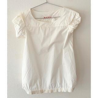 マルニ(Marni)のマルニ トップス 白(シャツ/ブラウス(半袖/袖なし))