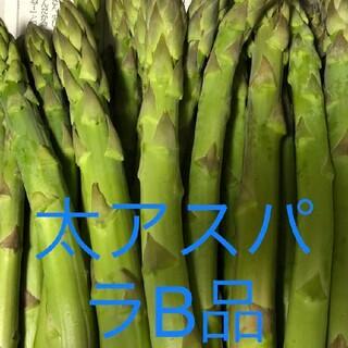 アスパラ1.2(野菜)
