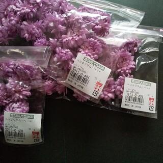 ヘリクリサムヘッド パープル 3袋 在庫処分 ドライフラワー ハーバリウム花材(ドライフラワー)