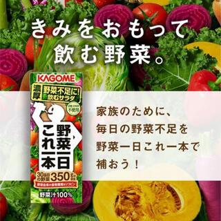 カゴメ(KAGOME)のカゴメ 野菜一日これ一本(その他)