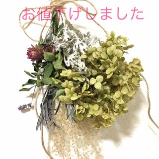 アナベルのグリーンスワッグ  30cm 花束 ブーケ E(ドライフラワー)