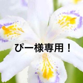 シャガの花 3株 シラン2株 秋明菊2株   ぴー様専用!(その他)
