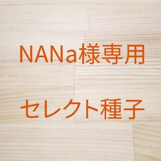NANa様専用 セレクト種子 11袋(野菜)