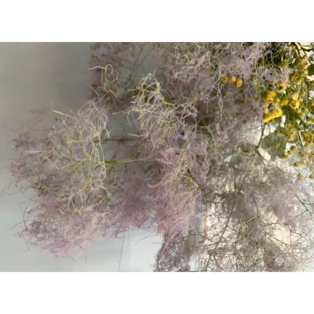 nco様専用ハンドメイドナチュラルドライスワッグ スモークツリーユーカリかすみ草 ハンドメイドのフラワー/ガーデン(ドライフラワー)の商品写真