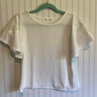 イーハイフンワールドギャラリー(E hyphen world gallery)の袖レース カットソー(カットソー(半袖/袖なし))