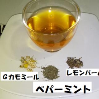 """""""ペパーミント""""ブレンドハーブティー(リーフスタイル約10回分)(茶)"""