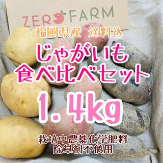 (送料込)じゃがいも食べ比べセット1.4kgジャガイモ(無農薬無化学肥料) (野菜)