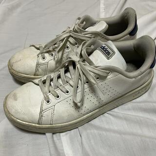 アディダス(adidas)のadidas アディダス スニーカー 白 ホワイト(スニーカー)