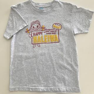 ハレイワ(HALEIWA)の⭐︎ハッピーハレイワ ハワイ⭐︎ 半袖 160・Mサイズ(Tシャツ(半袖/袖なし))