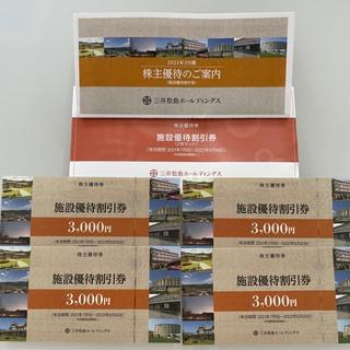三井松島ホールディングス 株主優待12,000円分(その他)