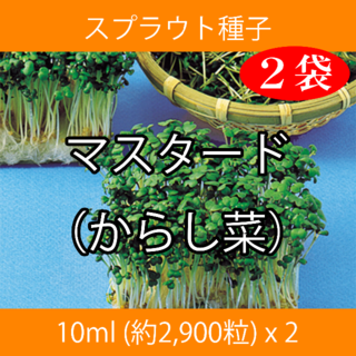 スプラウト種子 S-03 マスタード(からし菜) 10ml x 2袋(野菜)
