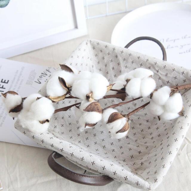 造花  白 コットン フラワー ドライフラワー 韓国 綿花 インテリア ハンドメイドのフラワー/ガーデン(ドライフラワー)の商品写真