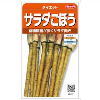 NEW ダイエット野菜 サラダごぼう 野菜種 15粒(野菜)