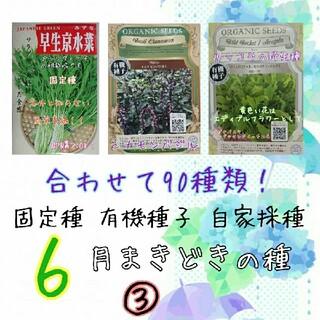コーラ様専用(野菜)