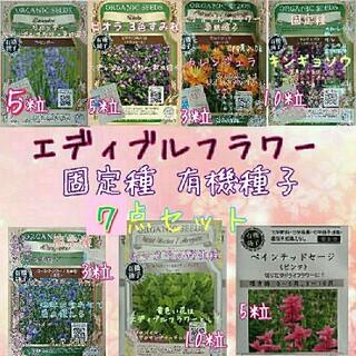 エディブルフラワー 専用種子 固定種 家庭菜園 野菜の種 水耕栽培 種子 種(野菜)