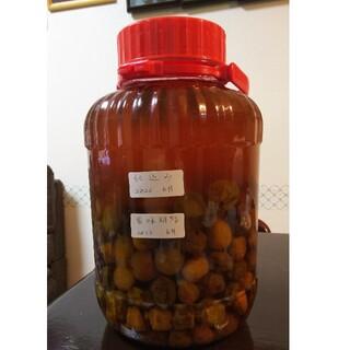 梅の実、梅ジュース(1.6キロ強)(フルーツ)