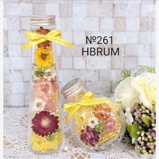 №261 ハーバリウム ビタミンイエロー HBRUM(ドライフラワー)