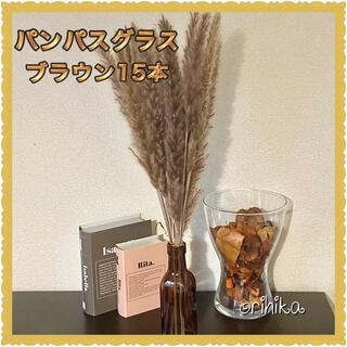 パンパスグラス ブラウン15本 送料込み ドライフラワー 観葉植物 花 韓国(ドライフラワー)