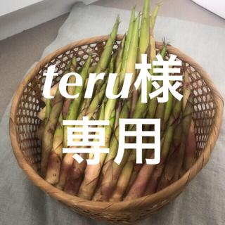 teru様専用です!(野菜)