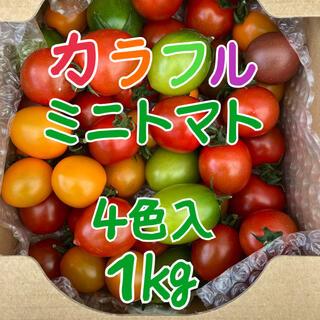 カラフルミニトマト4色詰め合わせ1kg(野菜)