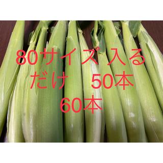 ヤングコーン 80サイズ ゴールドラッシュ(野菜)