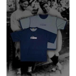 ザノースフェイス(THE NORTH FACE)のM サイズ STABRIDGE GRIP SWANY DRY TEE (Tシャツ/カットソー(半袖/袖なし))