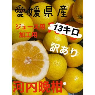 愛媛県産 訳あり河内晩柑13キロ(フルーツ)