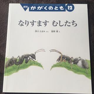 かがくのとも 2018年 12月号(絵本/児童書)