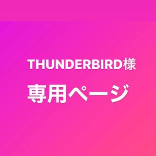 THUNDERBIRD様専用(ネックレス)
