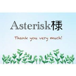 Asterisk様専用(その他)