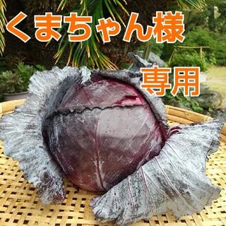 新鮮野菜【畑〜直送便♪60size】農薬不使用(野菜)