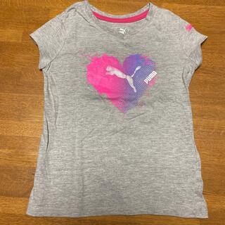 プーマ(PUMA)の[ほぼ未使用に近い] PUMA    Tシャツ (4T)(Tシャツ/カットソー)