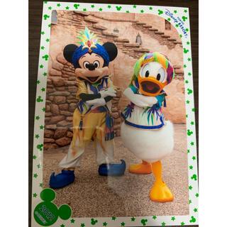 ディズニー(Disney)のディズニースペシャルフォト 2012(写真)