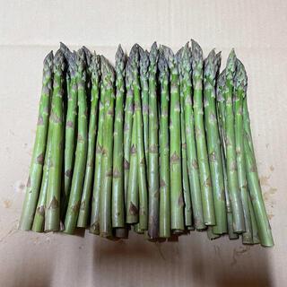北海道産 アスパラ 1キロ(野菜)