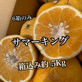 愛媛県産 サマーキング(フルーツ)