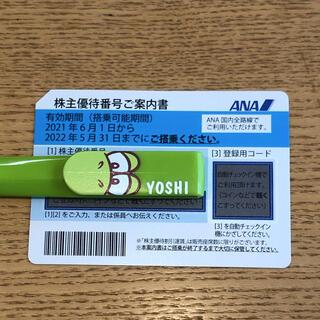 エーエヌエー(ゼンニッポンクウユ)(ANA(全日本空輸))のANA 株主優待券 最新 1枚(航空券)