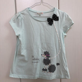 エニィファム(anyFAM)のanyFAM⭐︎Tシャツ ミント 140  プードル (Tシャツ/カットソー)