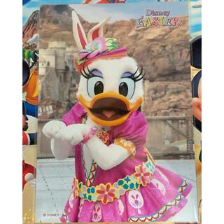 ディズニー(Disney)のディズニースペシャルフォト デイジー(写真)